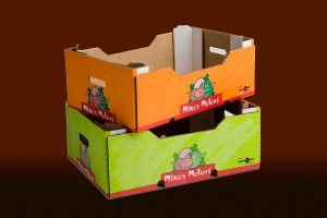 Vegetable Carton Box